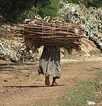 220px Woman Carrying Bundle of Wood Ethiopia e1321970853909 Article: Overcoming trauma and how life can be beautiful.