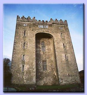 Bunratty fortress - Ireland