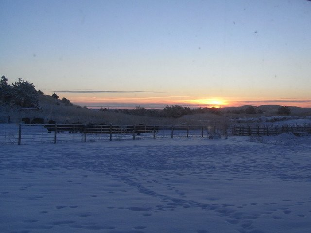 Wintery scenery
